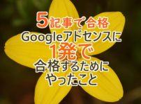 【5記事で合格】Googleアドセンスの審査に1発で受かるためにやったこと